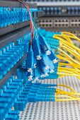 pic of raid  - Panel of Fiber network switch with some yellow optical network cables - JPG