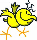 picture of enthusiastic  - Cool yellow chicken while moving frenetic - JPG