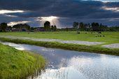 Sunbeams Through Storm Sky Over Farmland