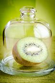 Kiwi Half Under The Glass Dome