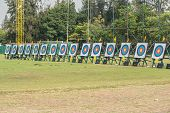 Many Archery Targets