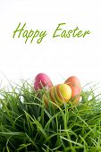 Colorful easter eggs on green grass, isolated on white