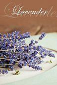 Lavender flowers on vintage background