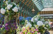 LONDON, UK - 22 JULY, 2014: Flower shop in Covent Garden market