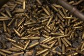 Empty 5.56x45mm NATO Tracer Bullet Casings
