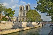 he Notre Dame cathedral of Paris