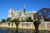 The Notre Dame cathedral of Paris