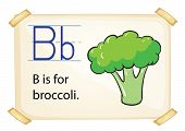 illustration of a flashcard letter B for broccoli