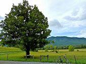 Biking in the mountains