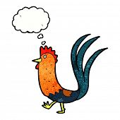 foto of cockerels  - cartoon cockerel with thought bubble - JPG