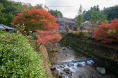 Autumn Landscape Background Red Leave In Obara Nagoya Japan poster
