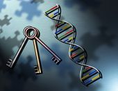 The Puzzlement of the Keys of Life: DNA