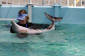 Trainer And Baby Dolphin