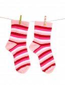 Socks hanging isolated on white