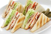 picture of sandwich  - club sandwich  - JPG