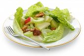 waldorf salad , apple diet salad