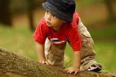 Small boy climbing over fallen tree.
