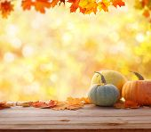 Autumn background with maple leaves and pumpkins.Harvest or Thanksgiving background poster