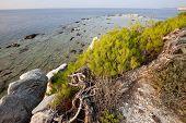 Постер, плакат: Блоки мрамора в море на Алики остров Тасос Греция