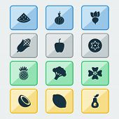 Fruit Icons Set With Dad, Pineapple, Palm Fruit And Other Ananas Elements. Isolated Vector Illustrat poster