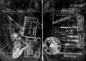 abstract grunge passport and visas