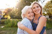 Portrait Of Smiling Mother Hugging Adult Daughter Outdoors In Summer Park poster