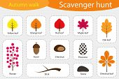 Scavenger Hunt, Autumn Walk, Different Colorful Autumn Pictures For Children, Fun Education Search G poster