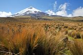 Mountain Cotopaxi - the highest active volcano at 5.897 m. Ecuador