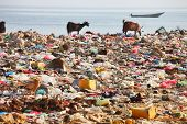 Dump on the beach of Socotra Island â?? man-made environmental disaster