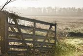 Gate on missouri farm in early morning