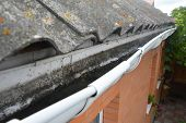 Dirt In Roof Gutter. Asbestos Roof With Rain Gutter. Gutter Cleaning. poster