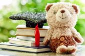 Smiling Teddy Bear Doll With Square Academic Cap And Stack Of Books Against Blurred Natural Green Ba poster