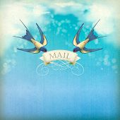 Swallows Mail Vintage Postcard