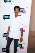 LOS ANGELES - MAY 22:  Kristen Kish arrives at the Bravo Media's 2013 For Your Consideration Emmy Event at the ATAS Leonard H. Goldenson Theater on May 22, 2013 in No. Hollywood, CA
