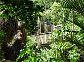 Bushland hiking trail