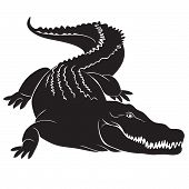 pic of dragon head  - Big crocodile with terrible canines - JPG