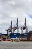 Containers And Cranes In The Port Of Montevideo