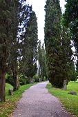Via Parque lapidar