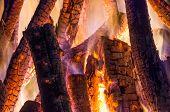 closeup photo of firewoods burning