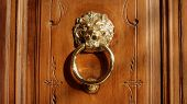 Door knocker with lion face