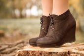 Boots On Stump
