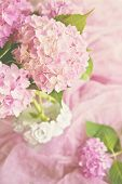 stock photo of hydrangea  - Pink hydrangea bouquet - JPG