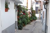 Andalusian Street