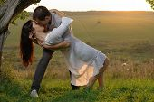 picture of sweethearts  - Couple sweethearts kissing under tree at summer - JPG