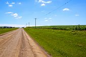 Rural Farm Road Bordered By Fields Of Corn