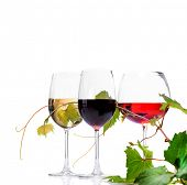Wine. Three Glasses of wine isolated on white background. Glass of rose, red and white wine decorate