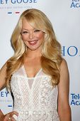 LOS ANGELES - JUN 1:  Charlotte Ross at the 7th Annual Television Academy Honors at SLS Hotel on Jun