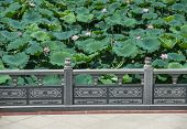 Chinese pavilion column with water lilies