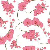 Pink orchid rococo seamless pattern