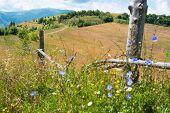 Wooden Fence Against The Landscape In The Ukrainian Carpathians